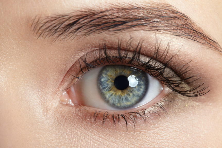 5-incredible-eye-facts-you-didnt-know-first-eye-care